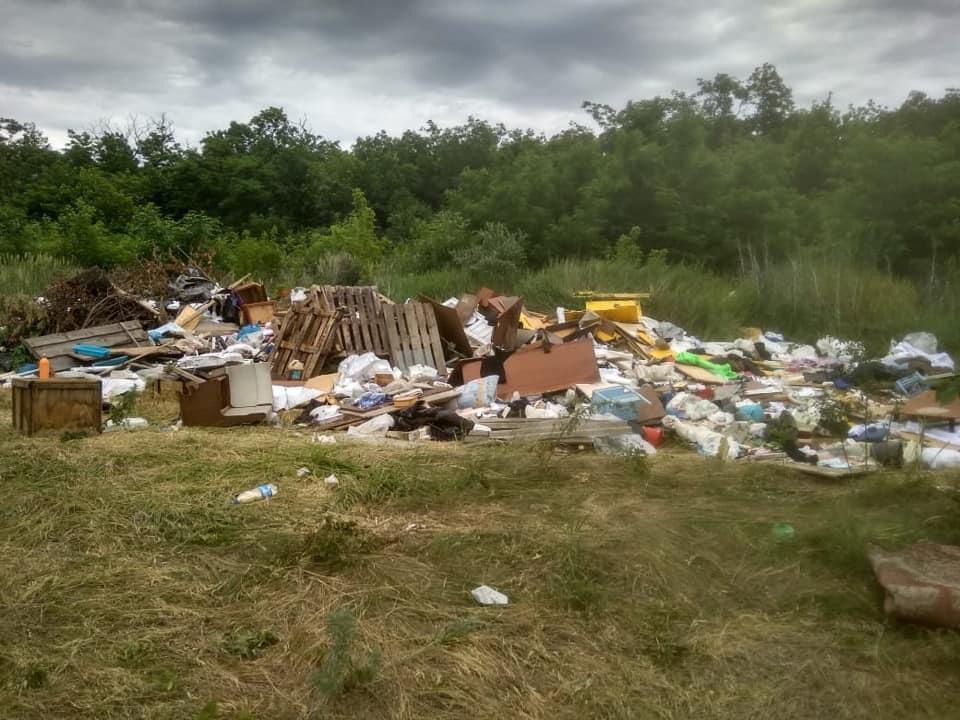 Эксперты Российского экологического общества провели рейд Ростова-на-Дону