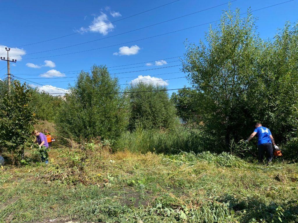 Представители Липецкого отделения Российского экологического общества приняли участие в субботнике