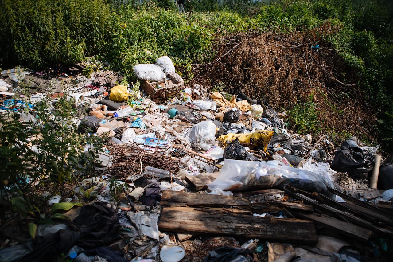 При поддержке Новосибирского регионального отделения Российского экологического общества ликвидирована несанкционированная свалка