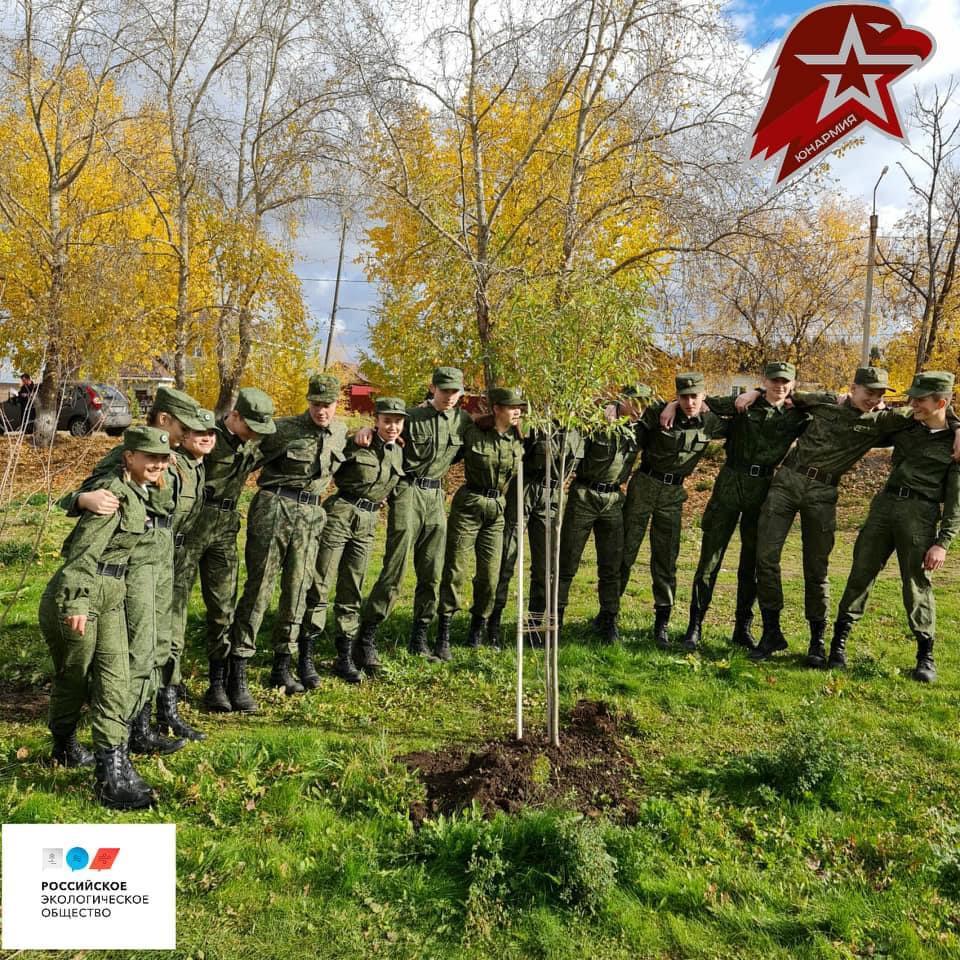 В Перми реализуется проект «Зеленый Щит»