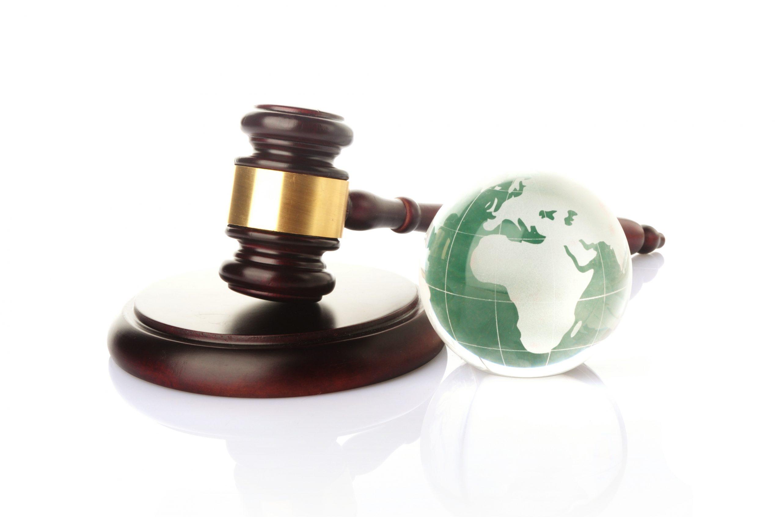 Перспективы экологического права обсудили на Мастер-классе