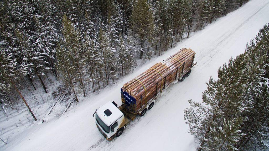 Лесозаготовки должны стать открытыми и прозрачными