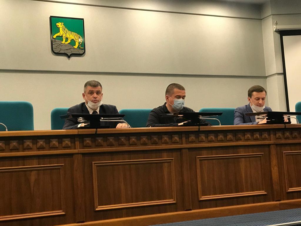 Во Владивостоке состоялось заседание рабочей группы по восстановлению древесно-кустарниковой растительности после ледяных дождей