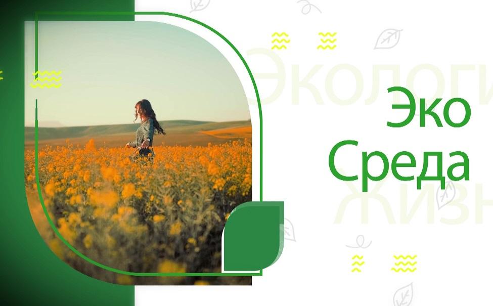«ЭкоСреда» - это новая программа об экологии региона, соавтором и экспертом в которой выступает Наталия Ткаченко.