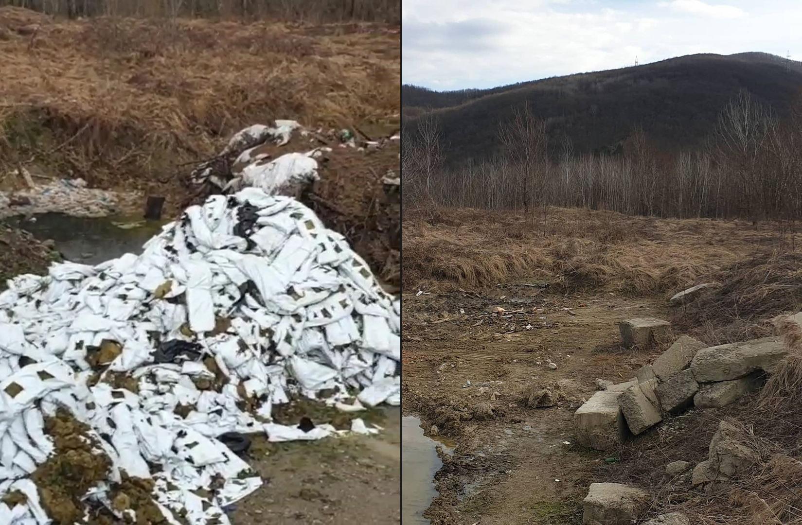 После вмешательства Краснодарского отделения РЭО ликвидирована несанкционированная свалка на ООПТ