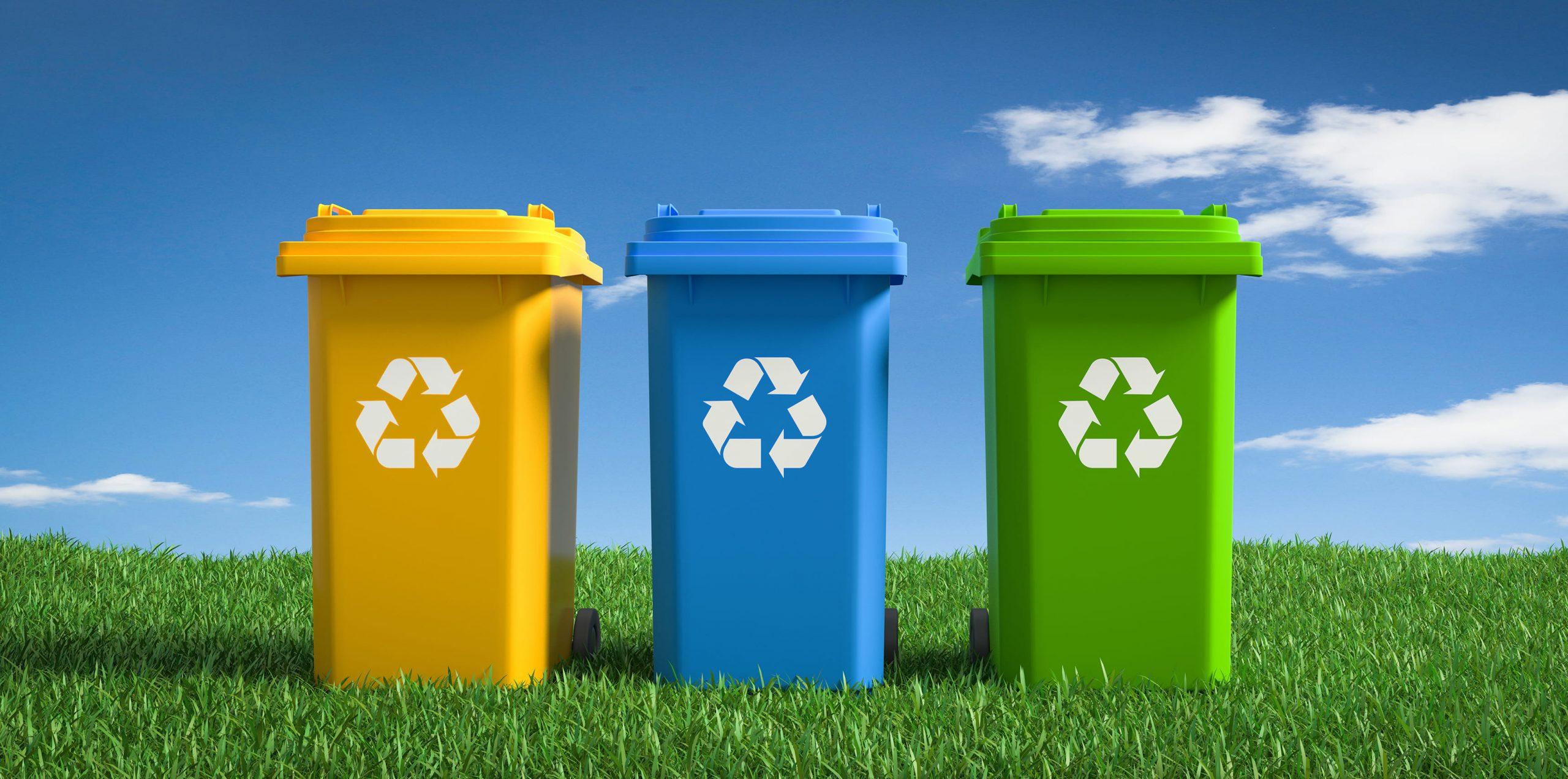 В Российском экологическом обществе состоялся Эко-завтрак на тему раздельного сбора отходов