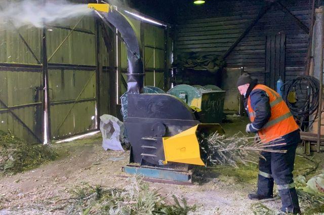 Свердловское отделение РЭО и проект «Немузей мусора» помогли екатеринбуржцам утилизировать новогодние елки