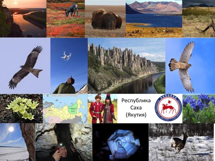 В Республике Саха (Якутия) создано региональное отделение Российского экологического общества