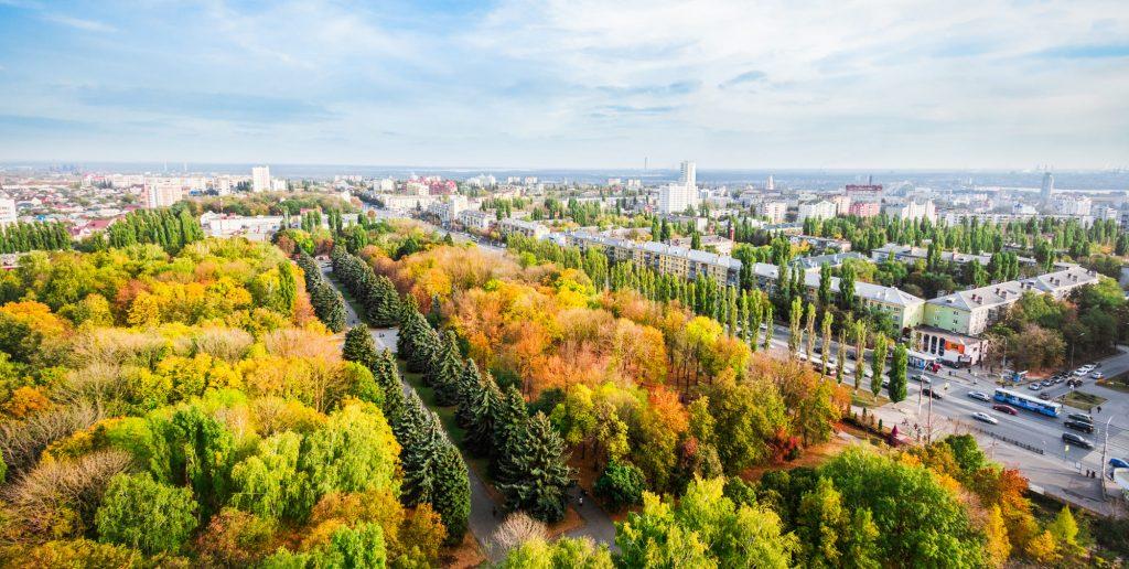 В Общественной палате города Липецка прошел круглый стол по вопросам озеленения