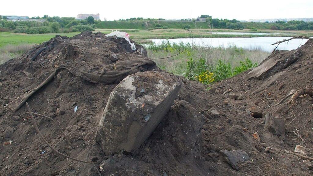 Рязанское отделение Российского экологического общества берет под контроль ситуацию с засыпкой озера «Дикая утка»
