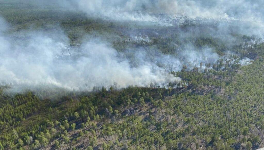 Минэкологии Якутии: замеры площадей лесных пожаров проводятся только после их ликвидации