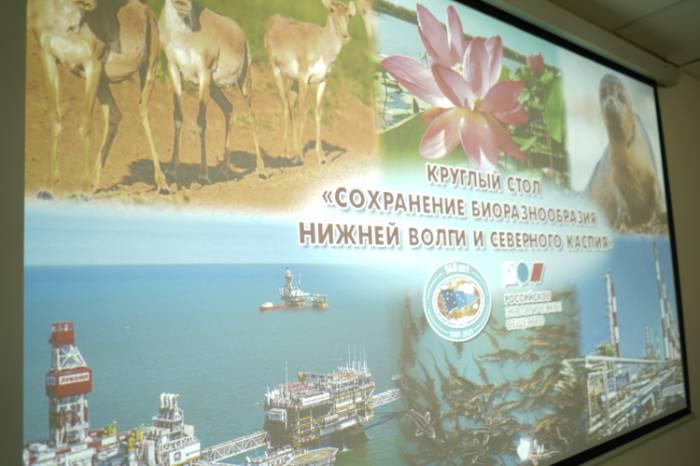 В Астраханской области обсудили вопросы восполнения биоресурсов Каспия
