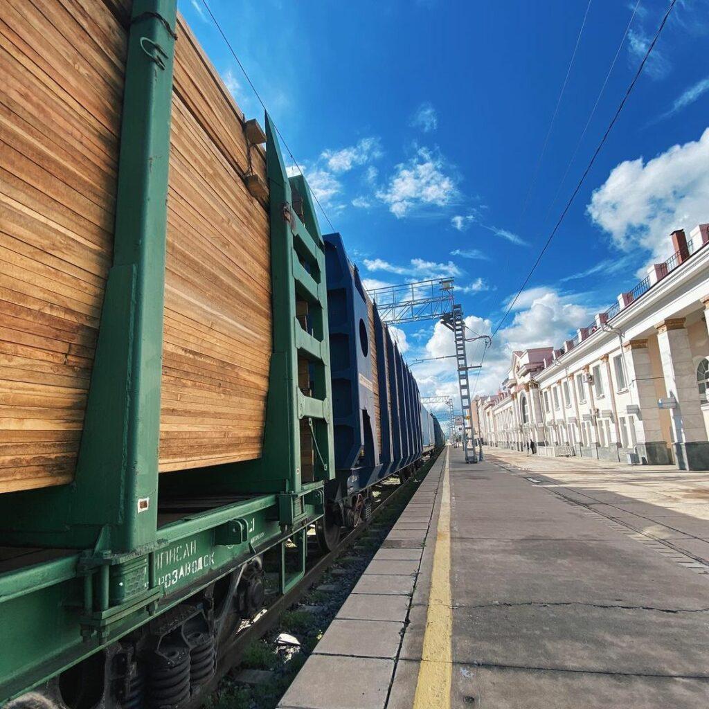 Виктория Абрамченко: С 1 июля заработает система прослеживаемости древесины