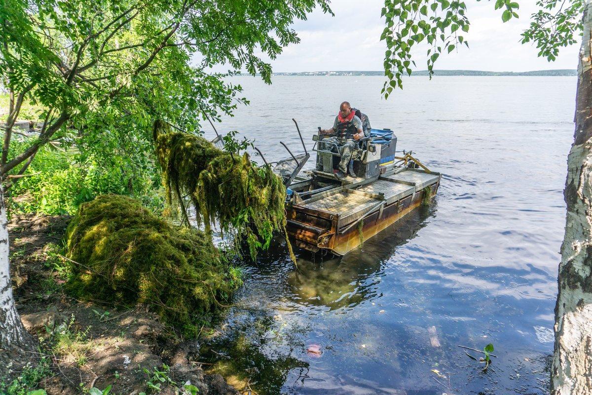 Со дна озера Шарташ подняли 15 тонн водорослей