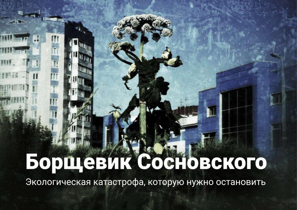 В Российском экологическом обществе продолжаются экспертные обсуждения проблем, связанных с борщевиком Сосновского