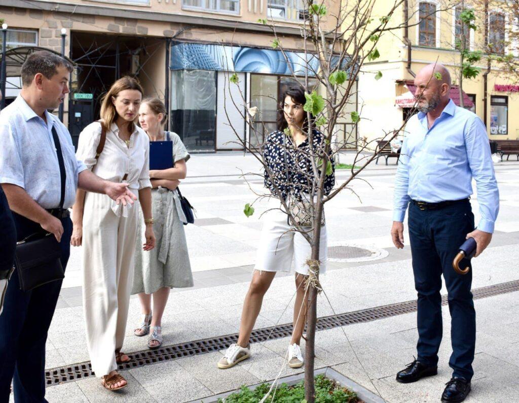 В Саратове провели рейд по мониторингу состояния зеленых насаждений