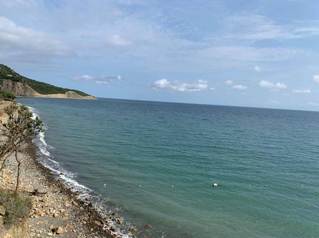 Краснодарские активисты Российского экологического общества мониторят акваторию Черного моря