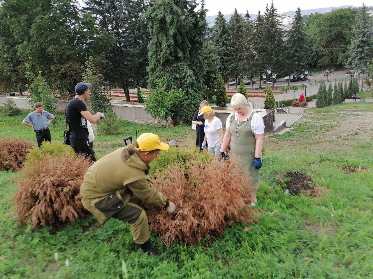 Кисловодские волонтеры ухаживают за деревьями в Саду Памяти