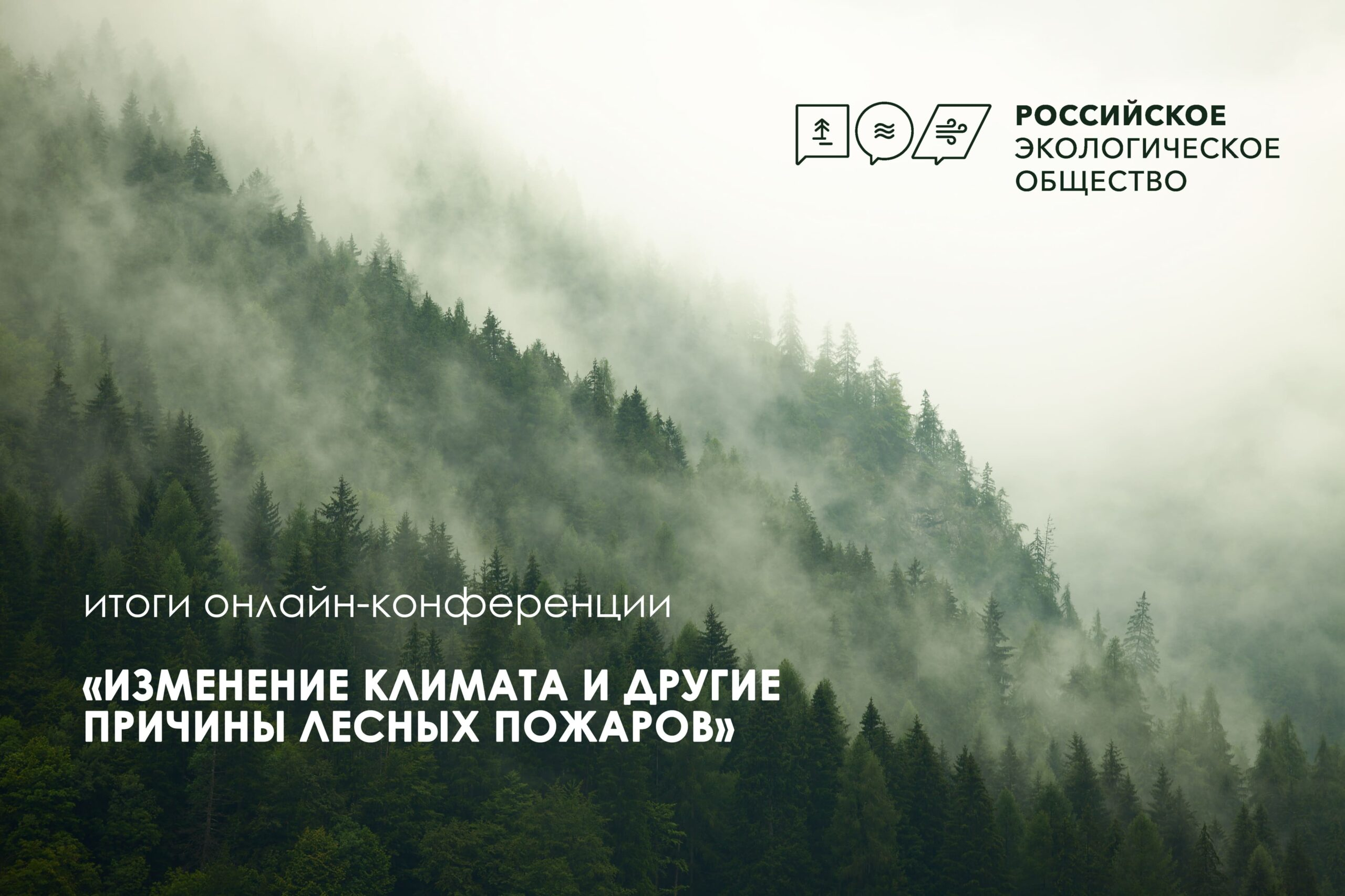 Изменение климата и проблемы лесных пожаров стали темой обсуждения на площадке Российского экологического общества