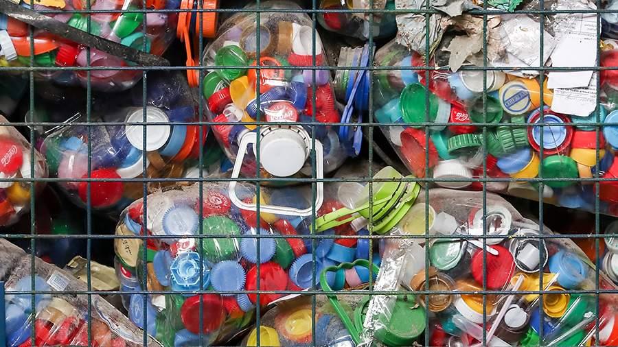 В России призвали к постепенной замене пластика на альтернативу