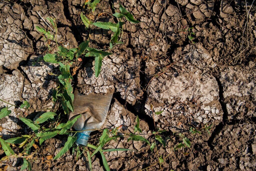 Возмещение вреда почвам: позиция экспертов Российского экологического общества