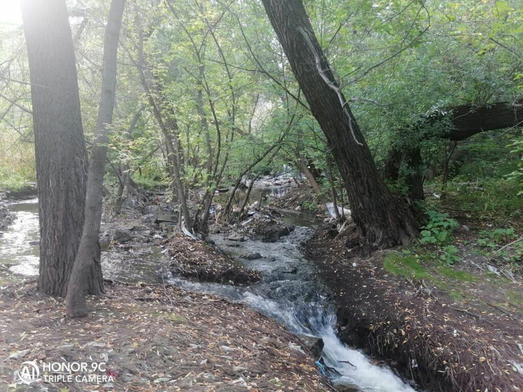 Ко Всемирному дню чистоты. организован месячник по очистке территории реки Пивоварки в Барнауле