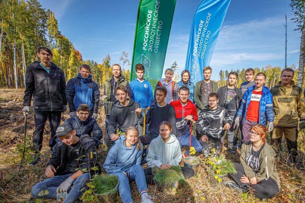 Алексей Вихарев: нам жизненно необходимо восстанавливать леса