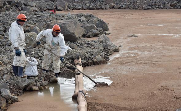Власти предложили обязать компании страховать экологические риски