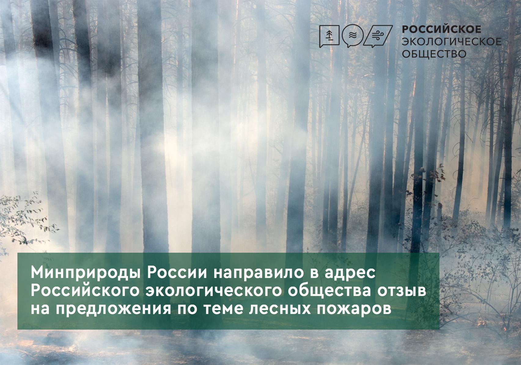 Минприроды России направило в адрес Российского экологического общества отзыв на предложения по теме лесных пожаров